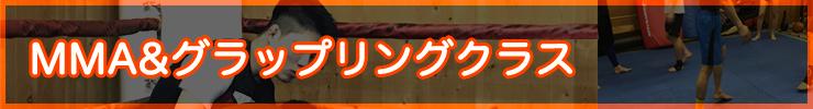 札幌市中央区の総合格闘技